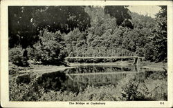 The Bridge At Cooksburg