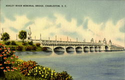 Ashley River Memorial Bridge