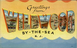 Greetings From Wildwood Postcard