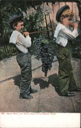Native son and native fruit of the Golden West
