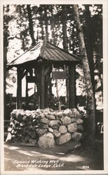 Famous Wishing Well - Brookdale Lodge Postcard