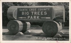 Santa Cruz County Big Trees Park