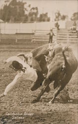 Cowboy Thrown from Bucking Bronco, California Rodeo Postcard