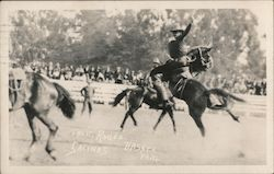 California Rodeo Postcard
