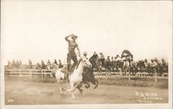 Cowboy, Big Week - California Rodeo Postcard