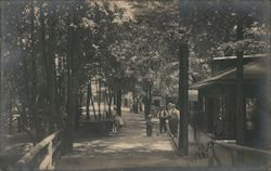 A Wooded Area with a Bridge and Buildings Postcard