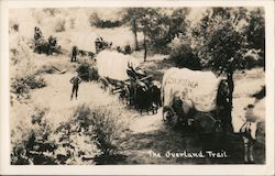 "The Overland Trail ""California or Bust"" Covered Wagons Postcard"