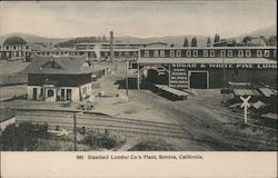 Standard Lumber Co.'s Plant Postcard