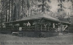 Big Tree Club House