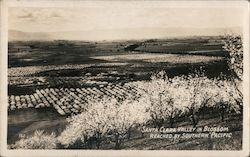 Santa Clara Valley in blossom reached by Southern Pacific