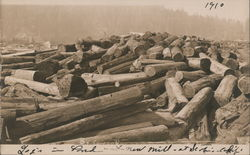Logs in Pond at New Mill