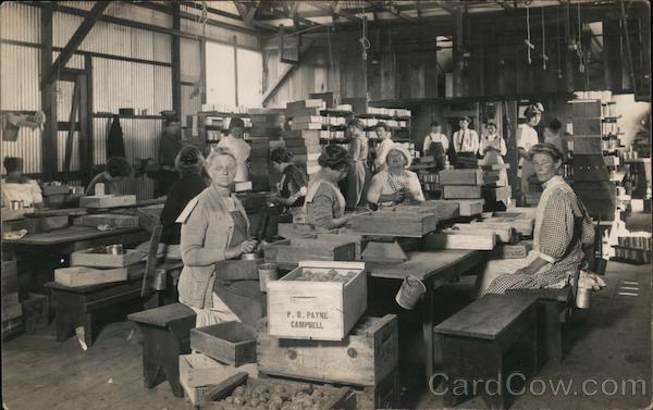 Women at Work - P.B. Payne Company Cannery Campbell California