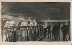 Dairy Farmers, Milking Parlor Postcard