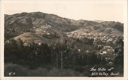 The Hills of Mill Valley Postcard
