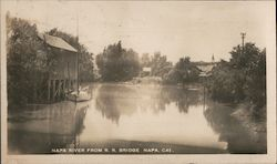View of Napa River from R.R. Bridge Postcard