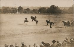 Bucking Horses Being Ridden Postcard