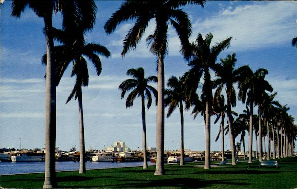 Palm Beach Florida