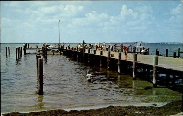 Municipal fishing and crabbing pier barnegat bay nj for Barnegat bay fishing report