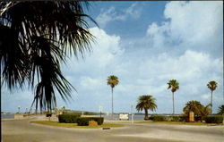Entrance To Causeway From City Of Clearwater