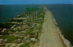 Cherry Grove Postcard