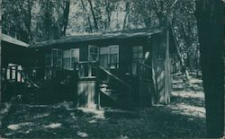 Duplex among the Redwoods Mount Hermon, CA Postcard