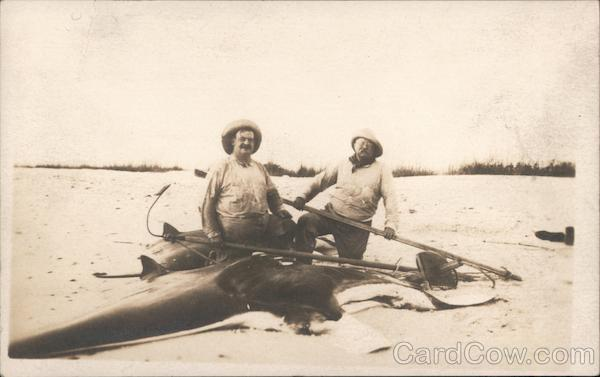 Rare: Teddy Roosevelt Russell J. Coles with Manta Ray Captiva Florida