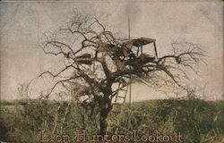 Lion Hunter's Lookout / treehouse lookout in Africa