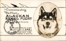 PAA Commemorating the First Alaskan Airmail Flight Between Juneau and Fairbanks Postcard