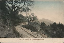 The Road to Mt. Tampalpais Postcard