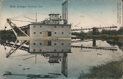Gold Dredger Postcard