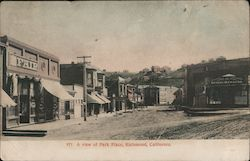 A View of Park Place Postcard