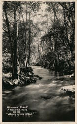 "Sonoma Creek in the ""Valley of the Moon"" Postcard"