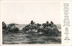 Seal Rock on the southern tip of Santa Catalina Postcard