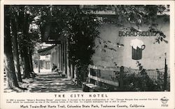 The City Hotel Postcard