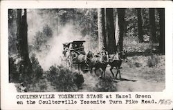 Coulterville Yosemite stage