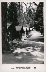 Cabins of Camp Seeley Postcard