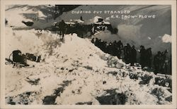 Digging out stranded R.R. Snow Plows Donner Summit