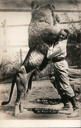 "Mr. Gay and ""Pluto"" - Gay's Lion Farm Postcard"