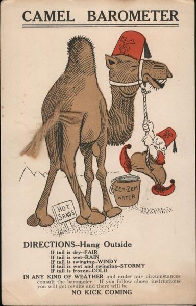 Camel Barometer Comic, Funny