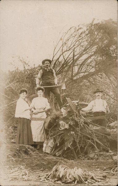 Men and Women Pose with Axes and Saws Near Trees People