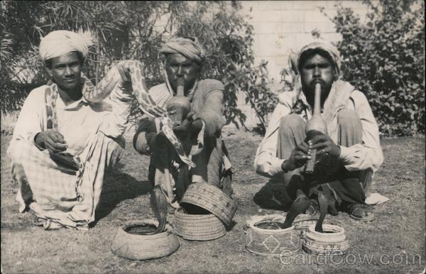 Three Indian snake charmers with three cobras