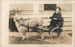 Girl in Goat Cart Postcard