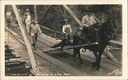 Bringing in a live bear. Using travois pulled by horse. Postcard