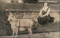Woman smiling in a Goat-Drawn Cart Postcard