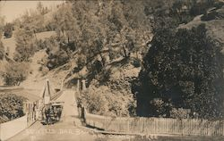 Bidwell Bar Bridge and Orange Tree Postcard