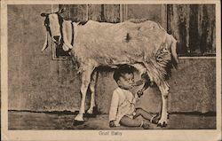 Goat Baby - young boy and a goat Postcard