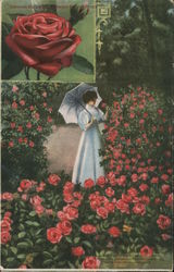 Growing Buckabees American Beauty Roses Rockford, IL Postcard