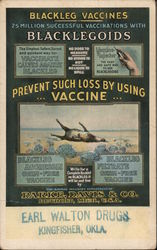 Blackleg Vaccienes - 25 Million successful vaccinations with Blacklegoids - Parke, Davis & Co Postcard