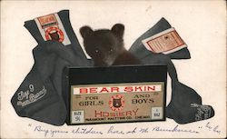 Bear Skin Hosiery for Girls and Boys-Paramount Knitting Co. Postcard