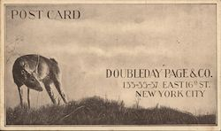 Doubleday Page & Co Postcard